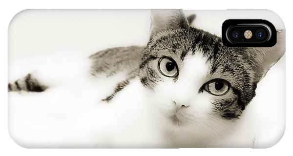 Dreamy Cat 2 IPhone Case
