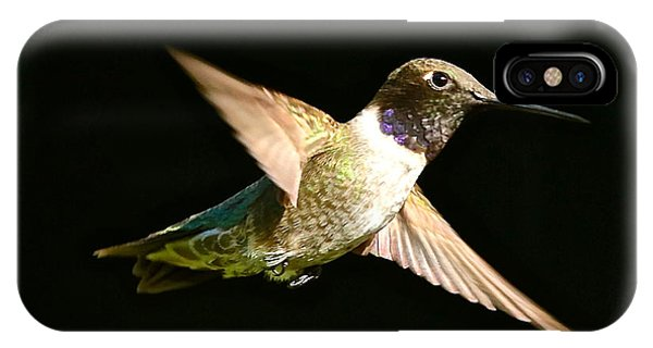 Stop Action iPhone Case - Dreamy Hummingbird by Carol Groenen