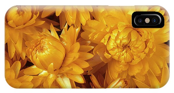 Dried Straw Flowers (helichrysum Sp.) Phone Case by Ann Pickford/science Photo Library