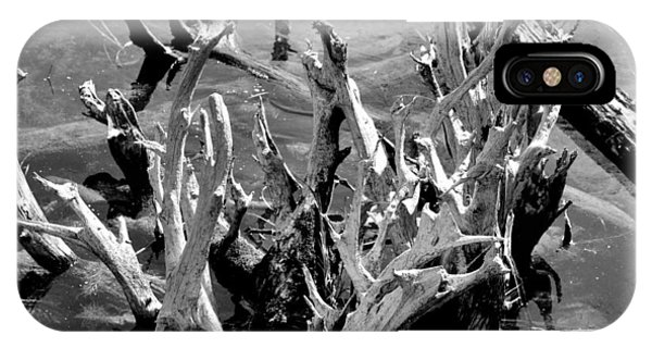 Driftwood On Lost Lake IPhone Case