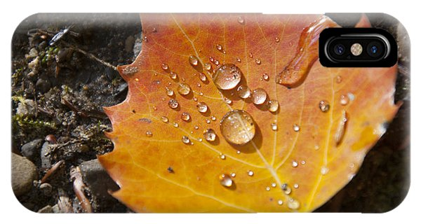 Droplets In Autumn Leaf IPhone Case