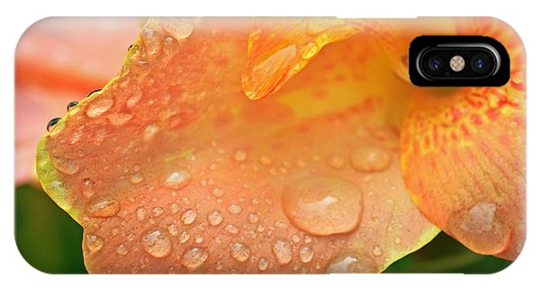 Droplets On A Canna II IPhone Case