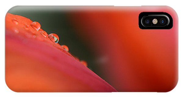 Droplets On Petals - 5796 IPhone Case