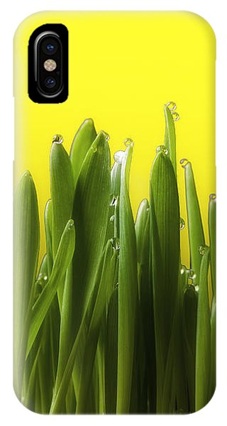 Drops Of Spring IPhone Case