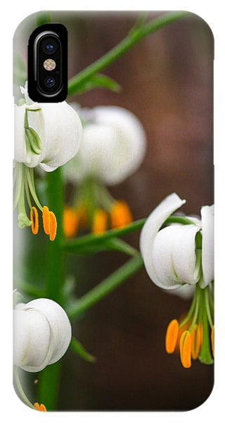 Drops Of Spring Phone Case by Ross Henton