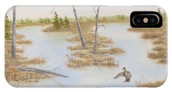 Duck Marsh Phone Case by Janet Hufnagle