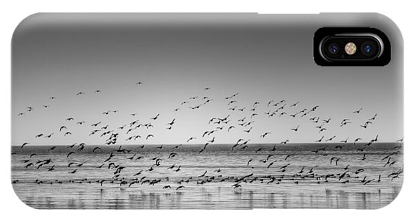 Duck Over Lake 1 B_w IPhone Case