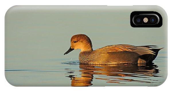 Duck Reflected IPhone Case