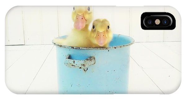 Duck iPhone Case - Duck Soup by Amy Tyler