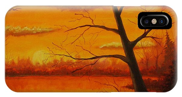 Duck Sunset IPhone Case
