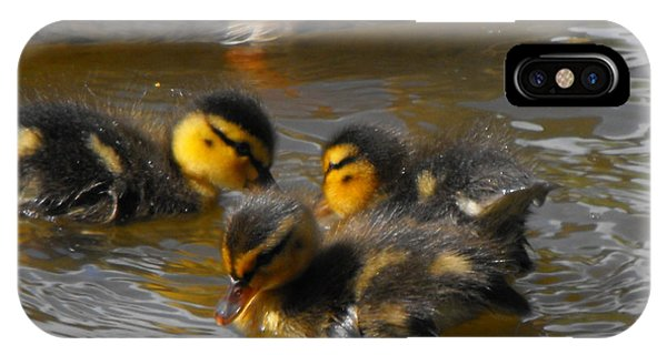 Duckling Splash IPhone Case
