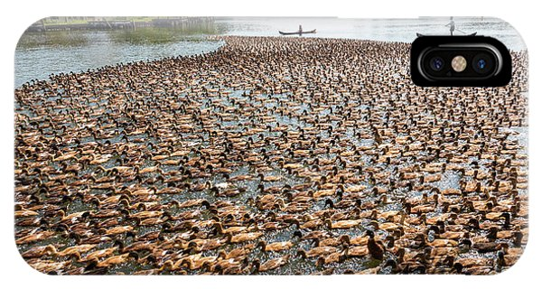 Kerala iPhone Case - Ducks Being Herded Along The Waterway by Peter Adams