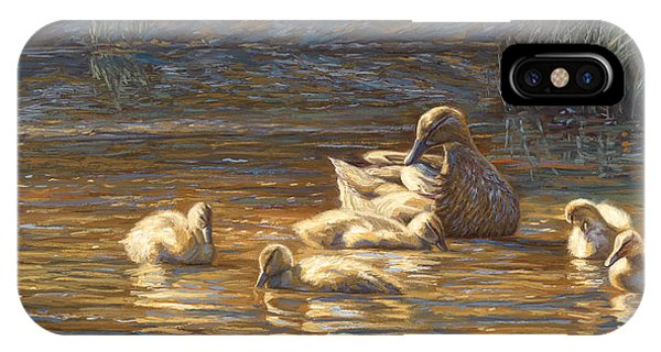 Duck iPhone Case - Ducks by Lucie Bilodeau