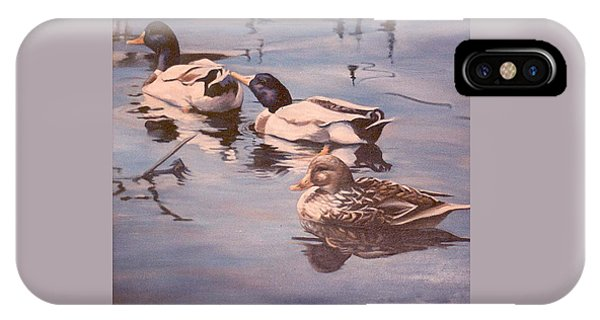 Ducks On The Cachuma IPhone Case