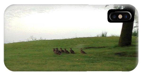 Ducks Walking Away IPhone Case