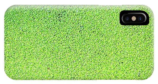 Aquatic Plants iPhone Case - Duckweed by Wladimir Bulgar