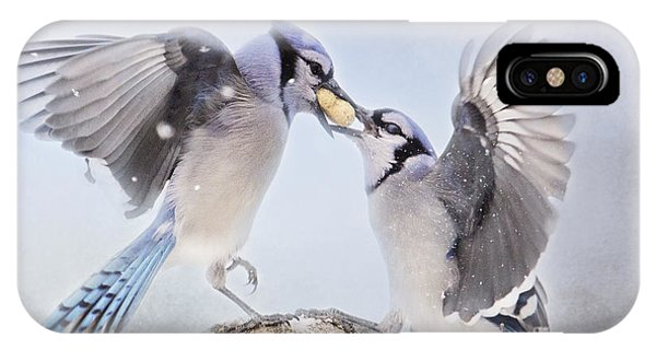 Dueling Jays IPhone Case