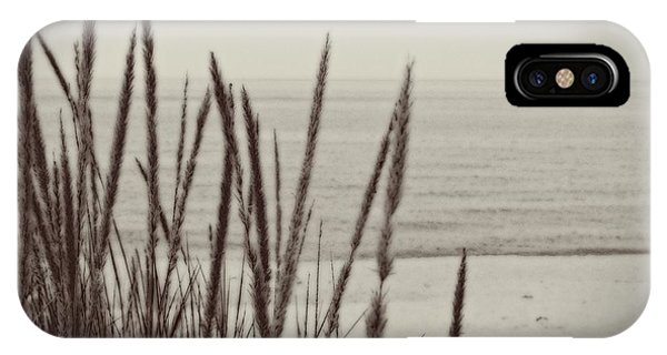 Dune Grass In Early Spring IPhone Case