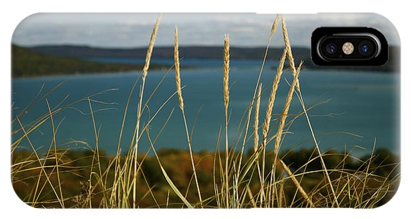 Dune Grass On A Sunny Fall Day IPhone Case