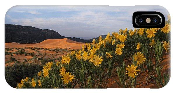 Dunes In Bloom IPhone Case
