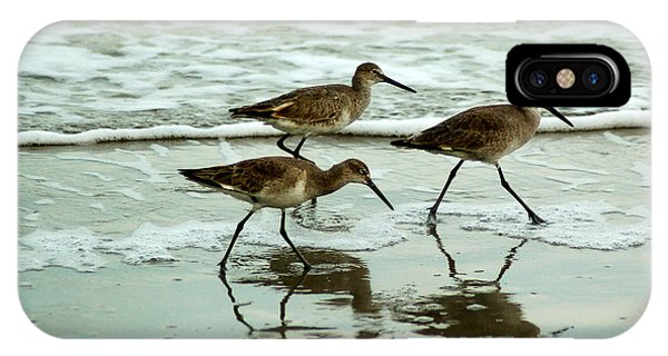 Dunlin's On The Shore IPhone Case