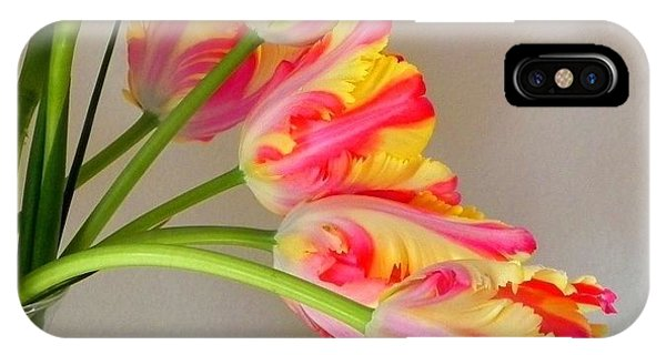 Dutch Tulips IPhone Case