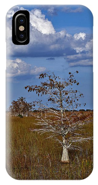 Dwarf Cypress IPhone Case