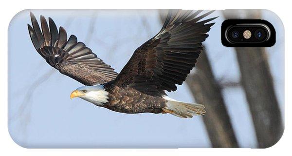 Eagle Flight IPhone Case