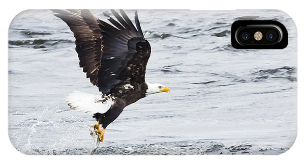 Eagle Hunting On The Wisconsin River Phone Case by Ricky L Jones