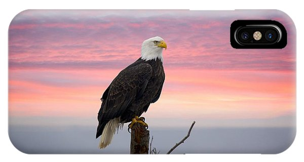 Eagle In The Mist IPhone Case