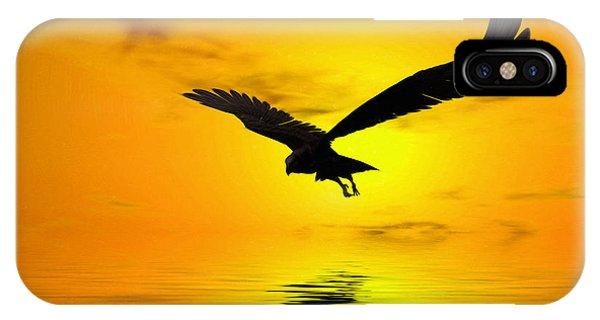 Avian iPhone Case - Eagle Sunset by John Edwards