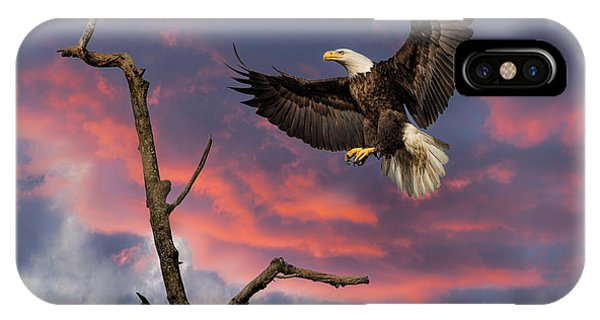 Eagle Sunset Landing IPhone Case