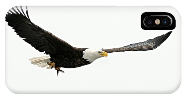 Eagle With Fish IPhone Case