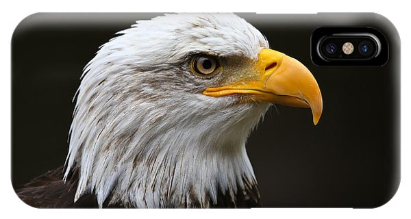 Bald Eagle Profile IPhone Case