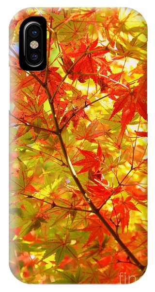 Early Fall IPhone Case