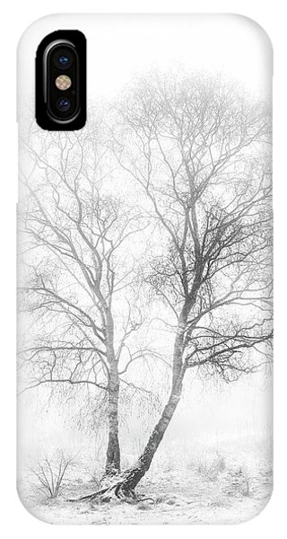 Birch Tree iPhone Case - Early In The Morning by Greetje Van Son