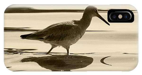 Early Morning In The Moss Landing Harbor Picture Of A Willet IPhone Case