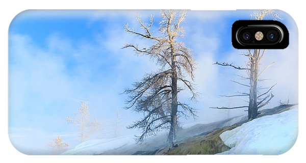 Mammoth Hot Springs iPhone Case - Early Morning Mist Around Trees by Tom Norring