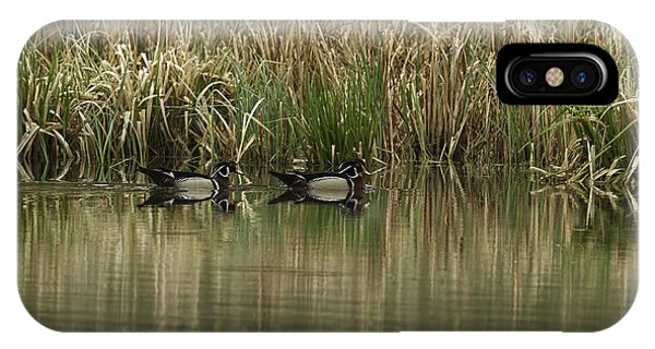 Early Morning Wood Ducks IPhone Case
