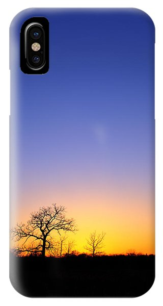 Early Spring Oak At Sunset IPhone Case