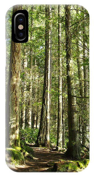 East Sooke Park Trail IPhone Case