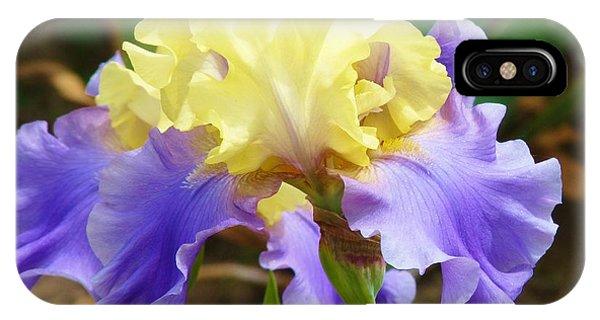 Easter Iris IPhone Case