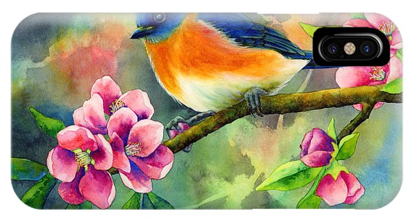 Bird Watercolor iPhone Case - Eastern Bluebird by Hailey E Herrera