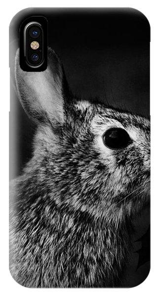 Eastern Cottontail Rabbit Portrait IPhone Case