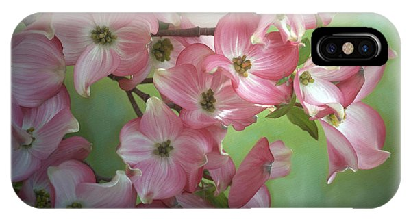 Eastern Dogwood I IPhone Case