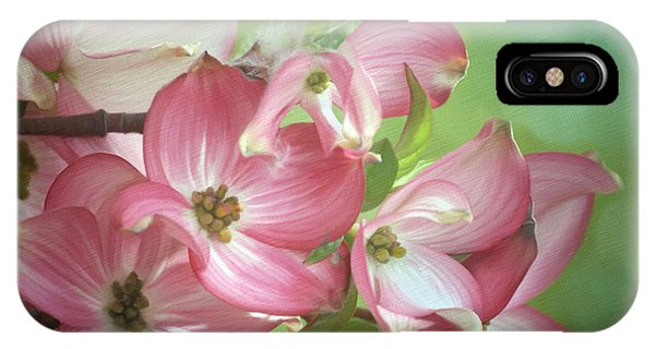Eastern Dogwood II IPhone Case