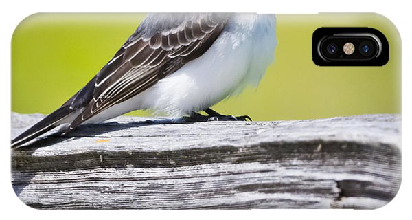 Eastern Kingbird Phone Case by Ricky L Jones