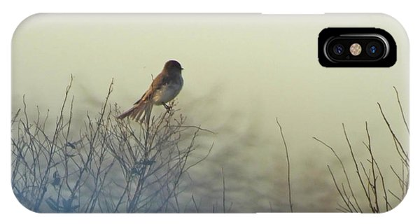 Eastern Phoebe Lacassine Pool  Lacassine Nwr IPhone Case
