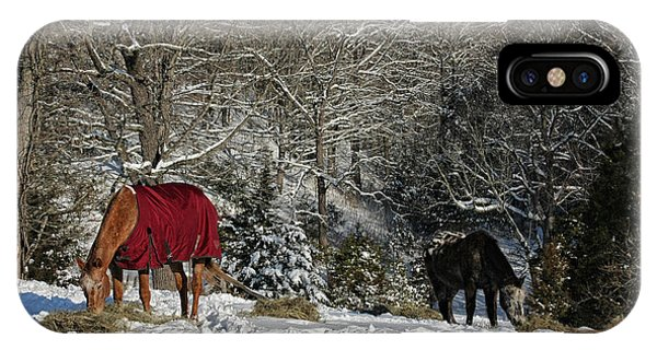 Eating Hay In The Snow IPhone Case