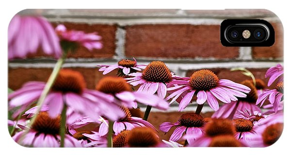 Echinacea And Brick Wall IPhone Case